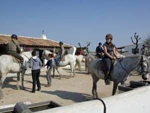 rando a cheval en camargue