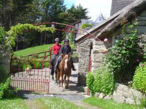 horseback ride in ireland