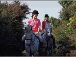 vacances a cheval en irlande