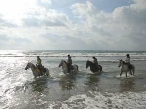randonnee equestre en espagne
