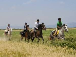 sejour a cheval en espagne