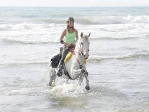 voyage a cheval en espagne