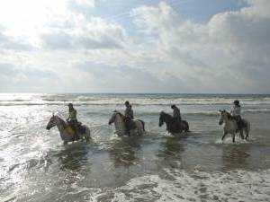 horseback holiday in spain