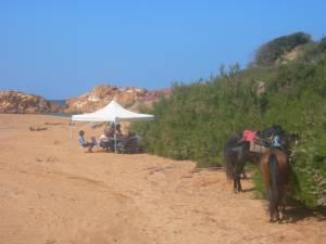vacances a cheval minorque
