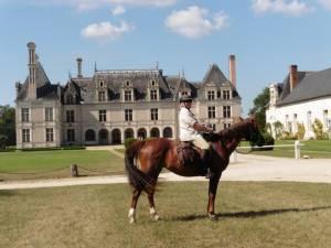 cheval et chateaux