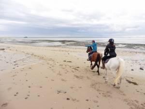 randonnee equestre normandie
