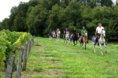 discover the loire castles horseback riding