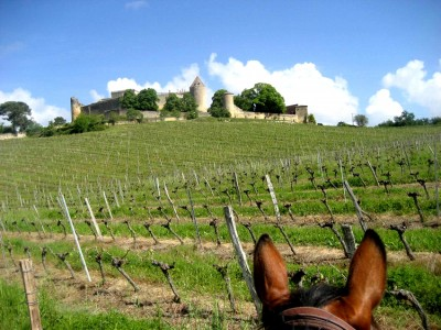 horseback trail ride bordeaux