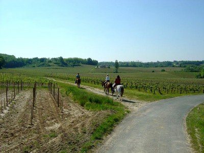 horse riding in bordeaux