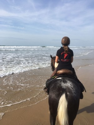 randonnee equestre medoc