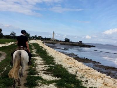 trek a cheval medoc