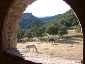 semaine a cheval provence