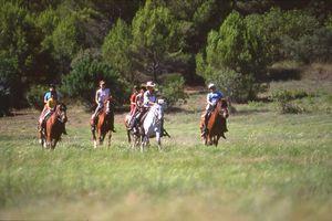 randonnee equestre route des vins de provence