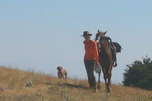 route des vins de provence a cheval