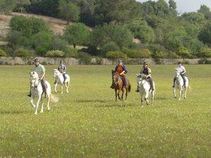 randonnee equestre a majorque