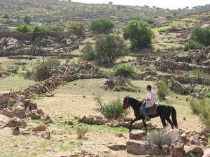 maroc a cheval