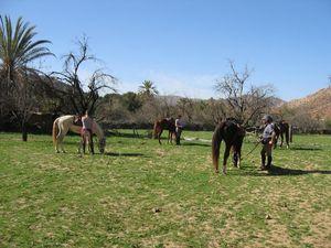 le maroc a cheval avec cap rando