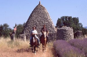 horse riding holiday in provence