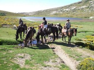 randonnee a cheval en corse