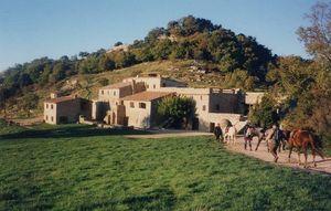 rando cheval en provence