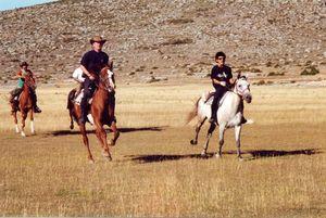 Randonnée Equestre PROVENCE : LE HAUT VERDON - Voyage 6 jours à Cheval
