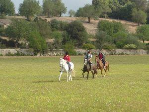 randonnee equestre majorque