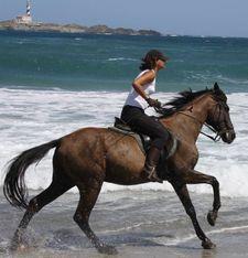 randonnee a cheval a minorque