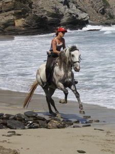 rando a cheval minorque