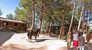 equitation en provence