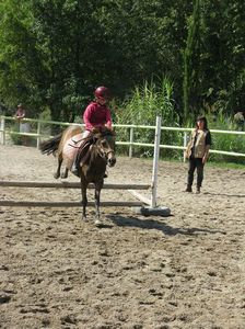 balade a cheval en provence