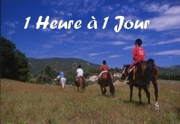Promenades à cheval de 1 heure à 1 jour en Provence
