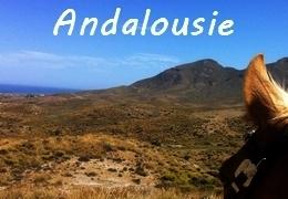 Randonnée à cheval en Andalousie