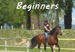 horse training and tril rides