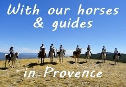 equestrian Provence