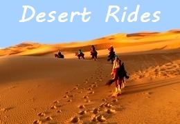 Desert horseback riding