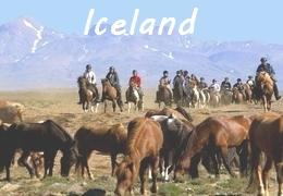 horseback riding trip in Iceland