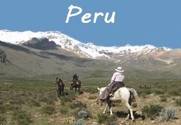 Horseback Trail rides in Peru