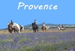 Provence horseback riding