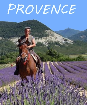 horseback riding in provence