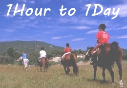 Short rides in Provence - 1 hour to 1 day