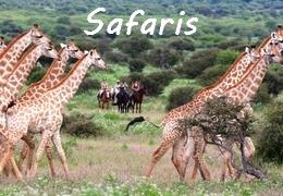 horse riding safari in Africa