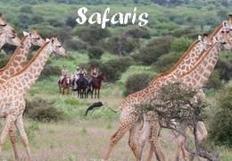 Safaris à cheval en Afrique du Sud - Botwana - Kenya