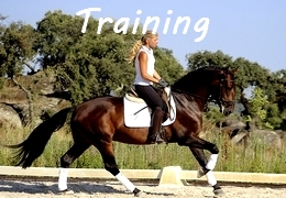 horse training Portugal and Spain