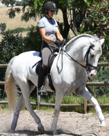stage equitation portugal