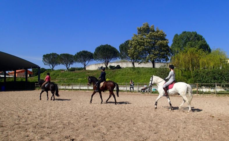 stage equitation au portugal